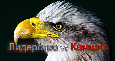 Лидерство vs Камшик